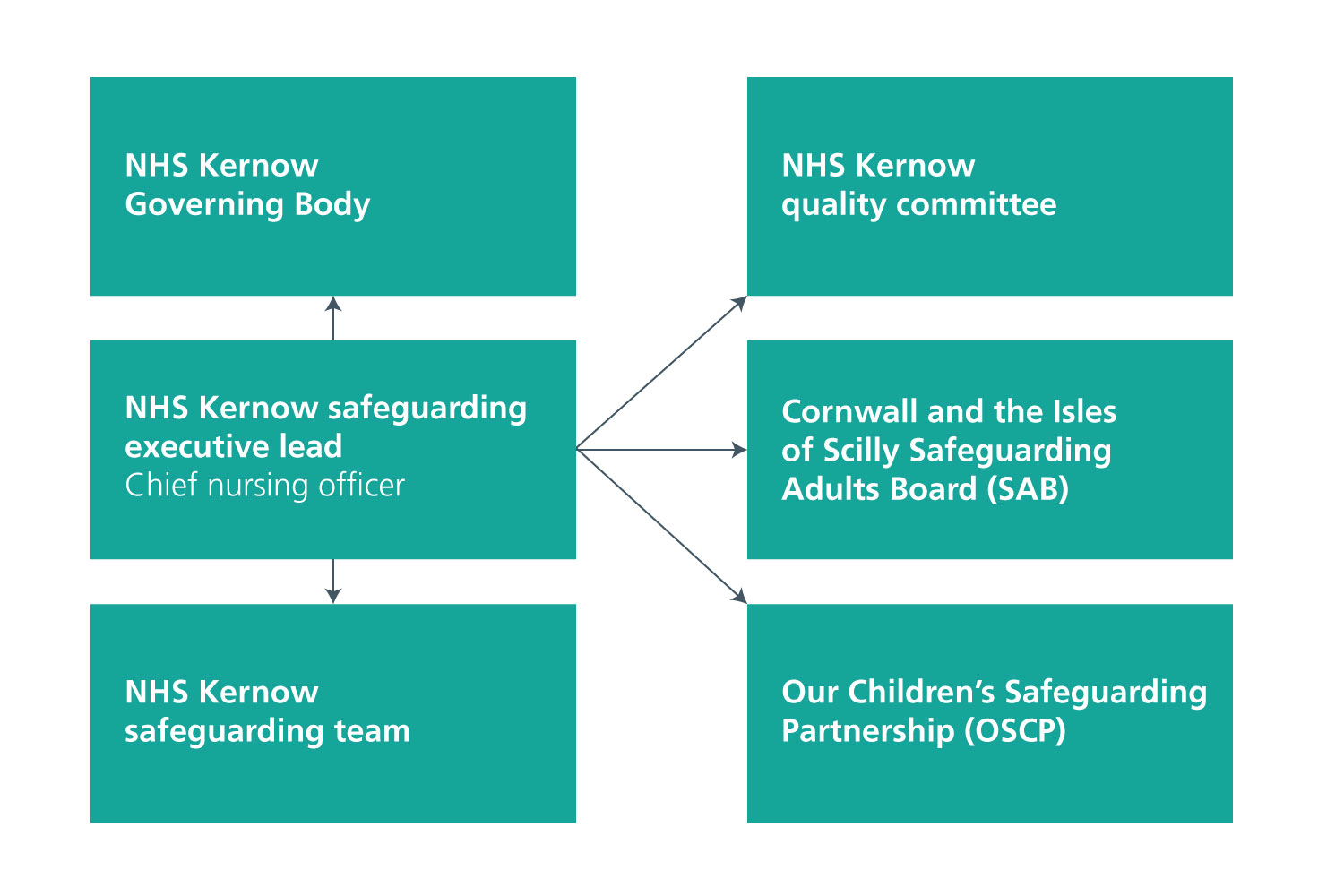 Safeguarding adult and children governance structure